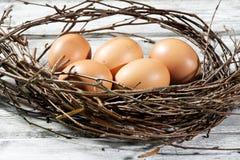 Φωλιά Πάσχας, αυγά Πάσχας και κλαδίσκοι Στοκ εικόνα με δικαίωμα ελεύθερης χρήσης