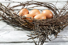 Φωλιά Πάσχας, αυγά Πάσχας και κλαδίσκοι Στοκ φωτογραφίες με δικαίωμα ελεύθερης χρήσης