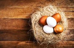 Φωλιά Πάσχας με τα αυγά στο ξύλινο υπόβαθρο με το copyspace. Μόριο Στοκ Φωτογραφίες