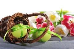 Φωλιά Πάσχας με το αυγό Πάσχας Στοκ φωτογραφίες με δικαίωμα ελεύθερης χρήσης