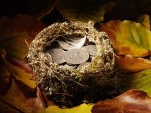 Φωλιά πουλιού που γεμίζουν με τα αμερικανικά φύλλα νομίσματος και φθινοπώρου Στοκ φωτογραφία με δικαίωμα ελεύθερης χρήσης