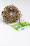 Φωλιά πουλιού στο άσπρο υπόβαθρο με το τραπεζογραμμάτιο Στοκ Φωτογραφίες