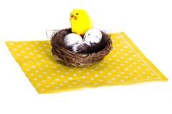 Φωλιά πουλιών με τα αυγά και το κοτόπουλο Στοκ Φωτογραφίες