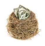 Φωλιά του αρχικού πουλιού με τους λογαριασμούς δολαρίων Νέα επιχείρηση που αρχίζει από τα τραπεζογραμμάτια χρυσή ιδιοκτησία βασικ στοκ εικόνα με δικαίωμα ελεύθερης χρήσης