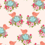 Φωλιές πουλιών με τα πουλιά και τα αυγά Στοκ Εικόνες