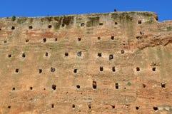 Φωλιές πουλιών στο μεσαιωνικό καφετή πέτρινο τοίχο, Μαρόκο στοκ εικόνα με δικαίωμα ελεύθερης χρήσης