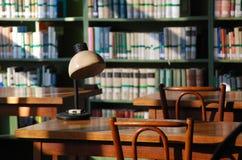 Φω'τα απογεύματος στη βιβλιοθήκη στοκ εικόνες