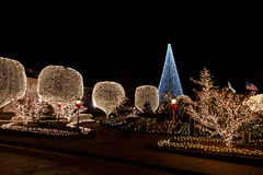Φω'τα διακοσμήσεων στα δέντρα τη νύχτα Στοκ φωτογραφίες με δικαίωμα ελεύθερης χρήσης
