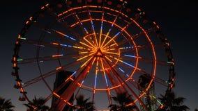 Φω'τα ροδών Ferris τη νύχτα και φοίνικες απόθεμα βίντεο