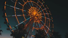 Φω'τα ροδών Ferris τη νύχτα και φοίνικες φιλμ μικρού μήκους