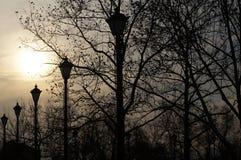 Φω'τα στο πάρκο Στοκ Εικόνες