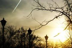Φω'τα στο πάρκο Στοκ φωτογραφίες με δικαίωμα ελεύθερης χρήσης