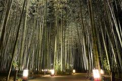 Φω'τα φαναριών σε μια διάβαση σε ένα άλσος μπαμπού κατά τη διάρκεια του φεστιβάλ Arashiyama Hanatouro στην Ιαπωνία Στοκ Φωτογραφία