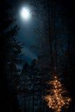 Φω'τα χειμερινής νύχτας Στοκ εικόνα με δικαίωμα ελεύθερης χρήσης