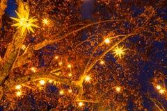 Φω'τα Χριστουγέννων που κρεμούν σε ένα δέντρο τη νύχτα στοκ εικόνες