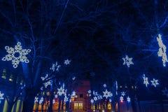 Φω'τα Χριστουγέννων στην αυγή στοκ εικόνες με δικαίωμα ελεύθερης χρήσης