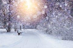 Φω'τα Χριστουγέννων στο παγωμένο υπόβαθρο Στοκ Εικόνα