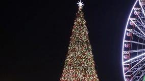 Φω'τα Χριστουγέννων απόθεμα βίντεο