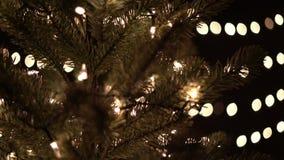 Φω'τα χριστουγεννιάτικων δέντρων και διακοσμήσεων με το υπόβαθρο bokeh απόθεμα βίντεο