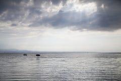Φω'τα Στοκ φωτογραφία με δικαίωμα ελεύθερης χρήσης