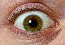 φόβος ματιών στοκ φωτογραφία με δικαίωμα ελεύθερης χρήσης