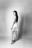 Φόρεμα δαντελλών Στοκ Εικόνες