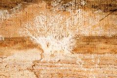 Φόρμα σε έναν ξύλινο πίνακα στοκ φωτογραφία με δικαίωμα ελεύθερης χρήσης