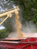 φόρτωση δημητριακών στοκ εικόνα με δικαίωμα ελεύθερης χρήσης