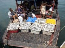 Φόρτωση σκαφών στο λιμένα Ankify, Μαδαγασκάρη Στοκ Φωτογραφία