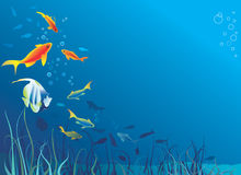 φύκι ζωής ψαριών υποβρύχιο απεικόνιση αποθεμάτων