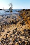Φύκι Andilana στον ουρανό νησιών άμμου βουνών Ινδικού Ωκεανού Στοκ εικόνες με δικαίωμα ελεύθερης χρήσης