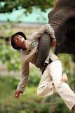 φύλακας ελεφάντων Στοκ εικόνα με δικαίωμα ελεύθερης χρήσης