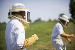 φύλακες μελισσών Στοκ Εικόνες