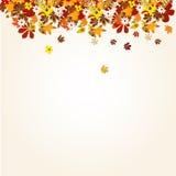 φύλλα ανασκόπησης φθινοπώ& Στοκ εικόνες με δικαίωμα ελεύθερης χρήσης