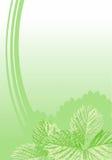 φύλλα ανασκόπησης Στοκ Φωτογραφίες