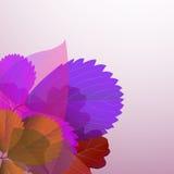 φύλλα απεικόνισης ρύθμιση Στοκ εικόνα με δικαίωμα ελεύθερης χρήσης