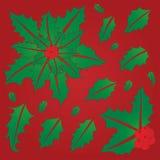 φύλλα ελαιόπρινου μούρων Στοκ Φωτογραφία