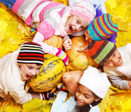 φύλλα κίτρινα Στοκ εικόνες με δικαίωμα ελεύθερης χρήσης