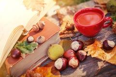 Φύλλα και κάστανα φθινοπώρου στον ξύλινο πίνακα Στοκ Εικόνα