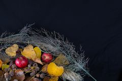 Φύλλα και Heather μήλων Στοκ Εικόνες