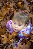 φύλλα κοριτσακιών φθινοπ Στοκ Φωτογραφίες
