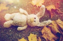 Φύλλα κουνελιών και φθινοπώρου παιχνιδιών στο δρόμο ή το έδαφος Στοκ εικόνα με δικαίωμα ελεύθερης χρήσης