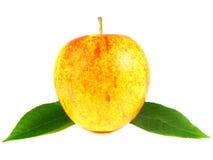 φύλλα μήλων Στοκ εικόνα με δικαίωμα ελεύθερης χρήσης