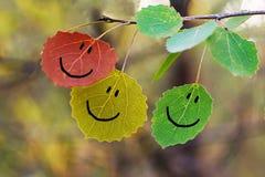 Φύλλα με τις εικόνες προσώπου στοκ φωτογραφία
