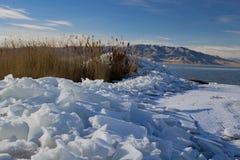 Φύλλα πάγου λιμνών της Γιούτα το χειμώνα στοκ εικόνα