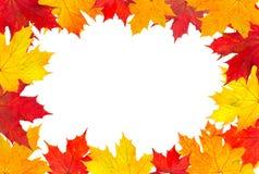 φύλλα πλαισίων φθινοπώρο&upsi Στοκ φωτογραφίες με δικαίωμα ελεύθερης χρήσης