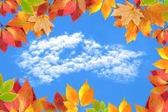 φύλλα πλαισίων φθινοπώρο&upsi Στοκ Εικόνα