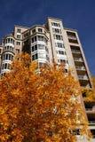 φύλλα πολυόροφων κτιρίων φθινοπώρου διαμερισμάτων στοκ φωτογραφία