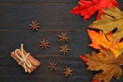 Φύλλα πτώσης με τα ραβδιά γλυκάνισου και κανέλας αστεριών στοκ φωτογραφίες