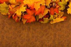 φύλλα πτώσης Στοκ Εικόνα